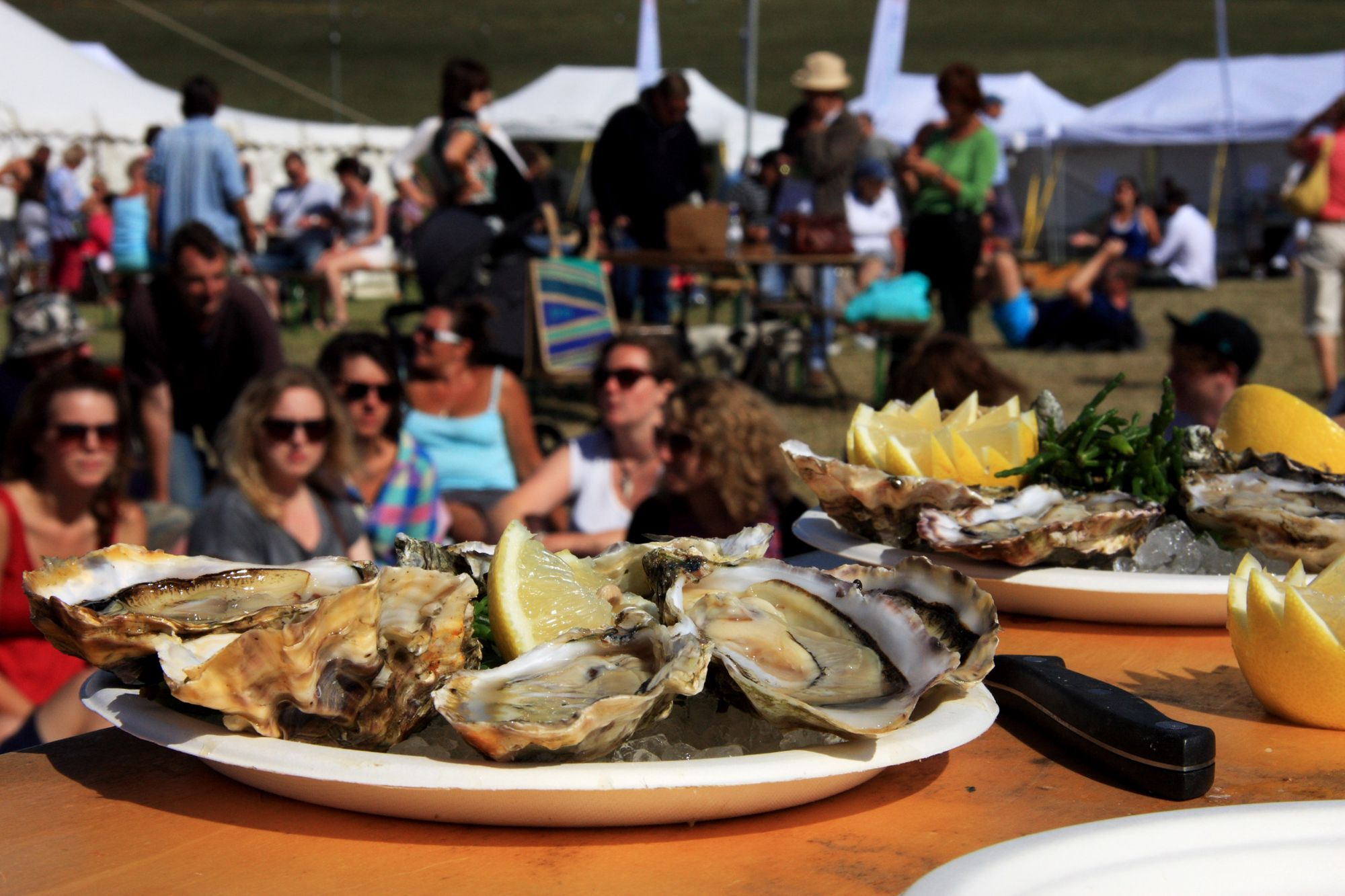rock oyster festival in cornwall